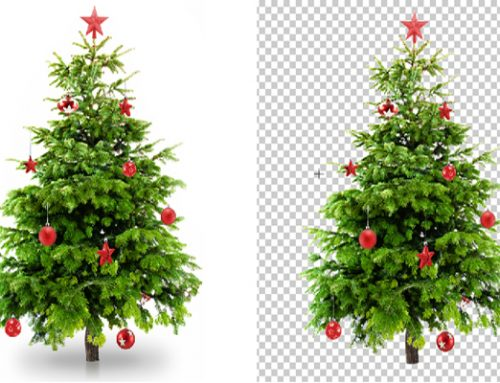 Tree Clipping Path